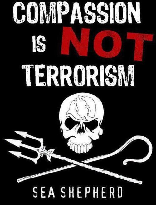 Sea Shepherd crew not 'pirates'.  http://www.nzherald.co.nz/world/news/article.cfm?c_id=2=10868490  @Sea Shepherd Conservation Society #defendconserveprotect