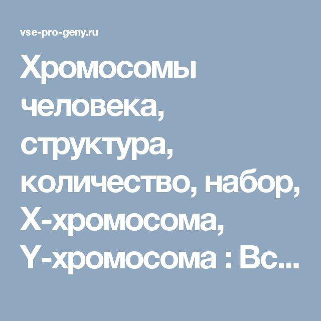 Хромосомы  человека, структура, количество, набор, Х-хромосома, Y-хромосома : Все про гены!