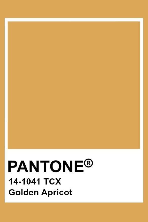Golden Apricot | / pantone / in 2019 | Gold color palettes