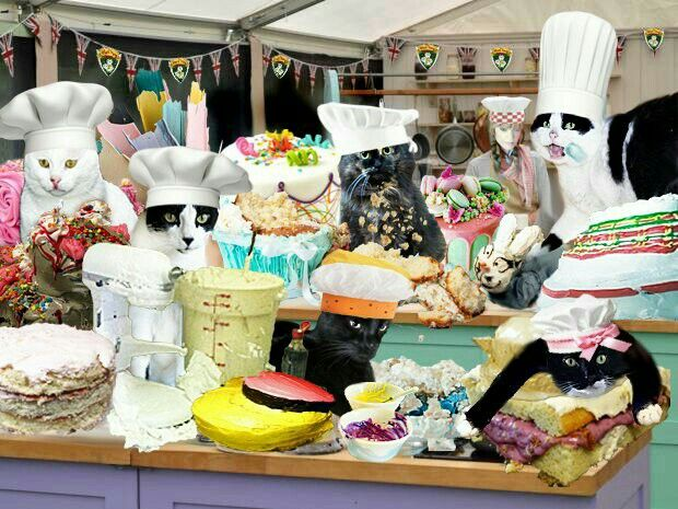 """I believe this is some """"bake off"""" event the Weeti Gang put together.... (Evil Stevie is in the foreground laying on 1 of the cakes.....)"""
