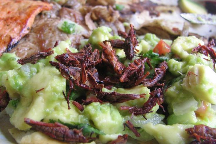 Chapulines- How to cook Grasshoppers
