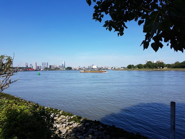 Eiland van Brienenoord met uitzicht op de stad