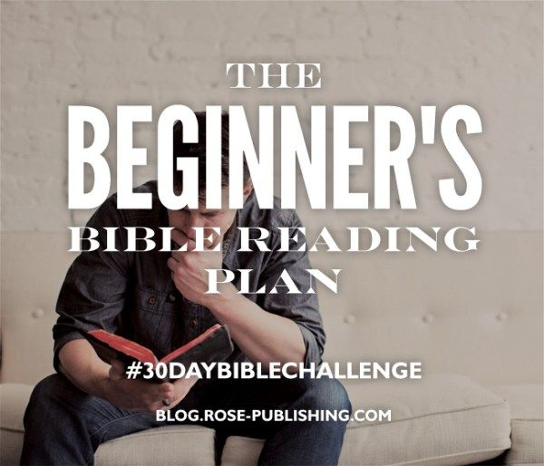 7 best free bible reading plans images on pinterest bible reading a beginners bible reading plan fandeluxe Images