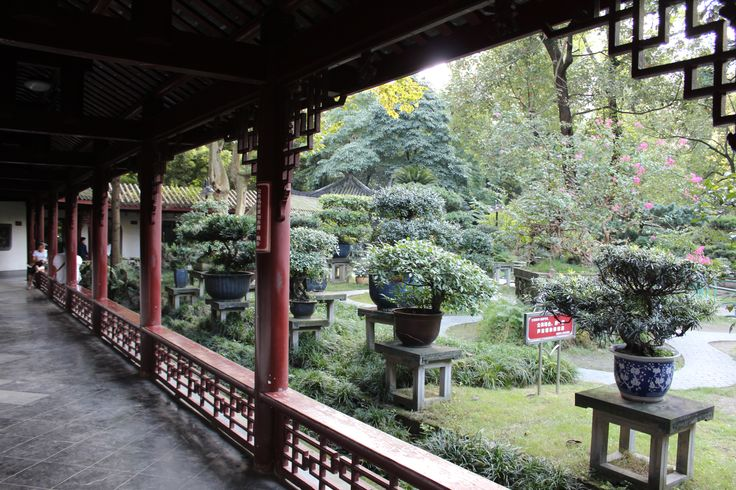 The Peoples Park in Chengdu was a window into the life of ordinary Chinese in this part of the country. Beautifully tended gardens edged by covered porticoes, meandering paths and water features...these were the backdrops to all kinds of social interactions.