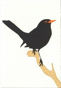 Image of Blackbird Card