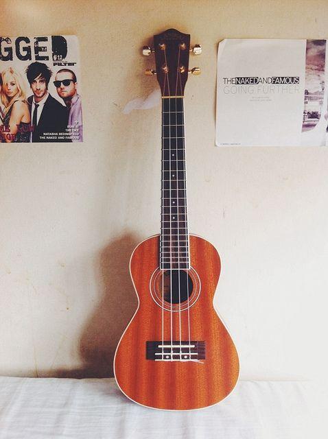 flickr.com, Guitar indie © Enzo Gaya