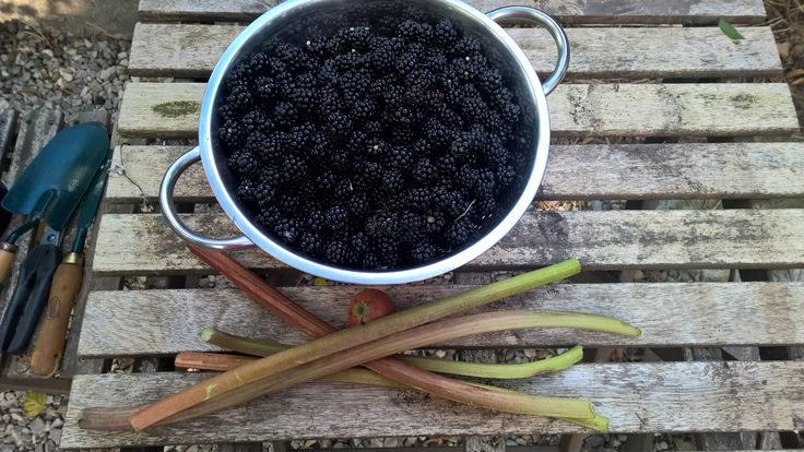 Harvest, hedgerows and homebrew