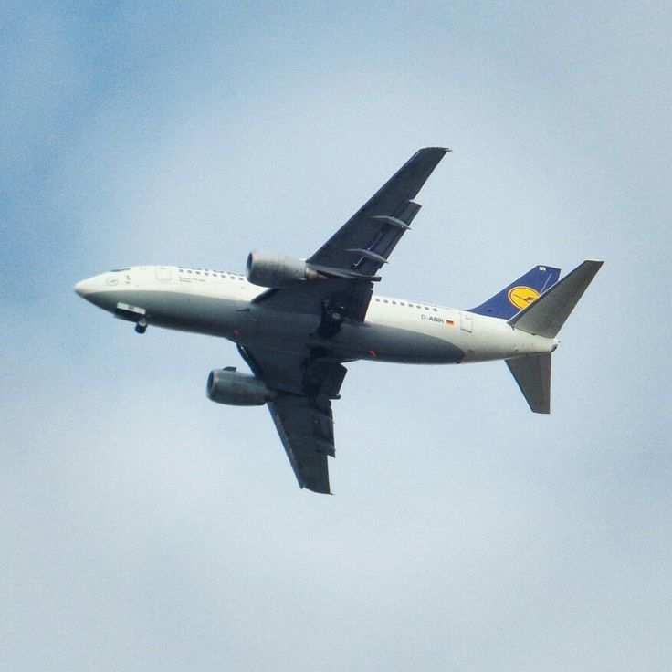 #gruby #benek #lufthansa #boeing #737 #approach #EPWR ⭐ #planespotting #spotting #aviation #avporn #lotnictwo #samolot #plane #wroclove #wroclaw #polska #poland