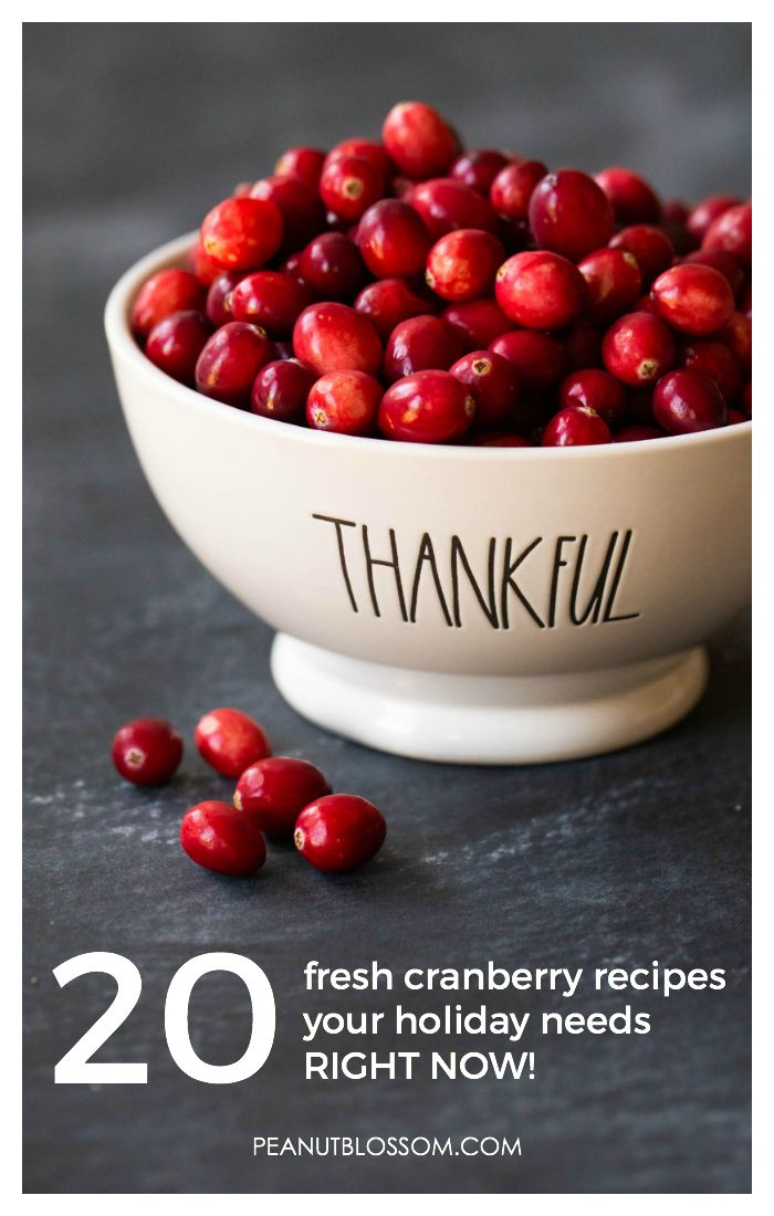 20 fresh cranberry recipes your holiday needs right now