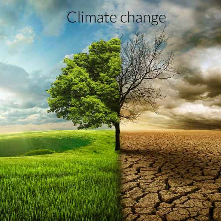 Climate change is happening and it is caused by human activity. Anyone who denies that does not believe in what is scientific fact. The good news: it is not to late to combat CC and mitigate its impacts. But action must be taken NOW .  Everyone can help to reduce the pressure that we put on the environment !  Learn how to reduce your carbon footprint    http://ift.tt/U6YRzO  #becausethereisnoplanetb #carbonfootprint #environmentalist #sustainability #sustainableliving #combat #climatechange…
