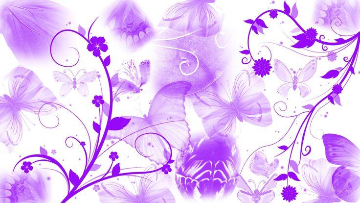 A Lot Of Purple Flowers HD Wide Wallpaper For Widescreen Wallpapers