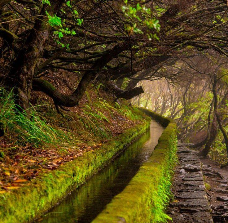 In 197.299 Schritten einmal quer durch Madeira - Madeira, Portugal Suchen Sie eine Fewo - www.casadomiradouro.com oder ein Ferienhaus - www.madeiracasa.com