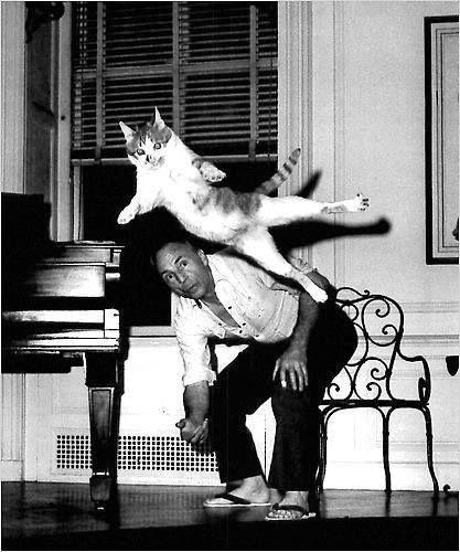 Джордж Баланчин с кошкой Муркой, виртуозно выполняющей Grand Jete. Фото © Martha Swope.