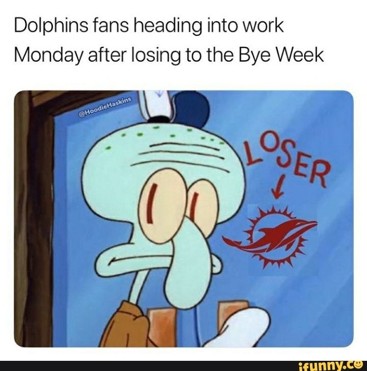 Dolphins Fans Heading Into Work Monday After Losing To The Bye Week Ifunny Funny Sports Memes Sports Memes Memes