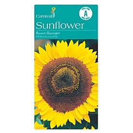 Carnival Russia Sunflower Flower Seeds