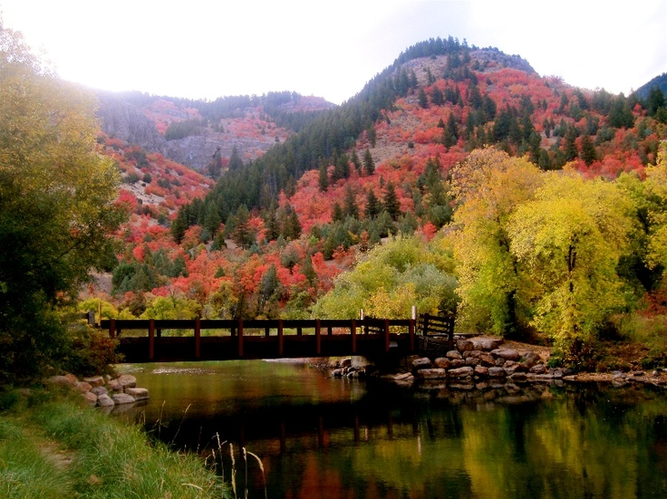 14 Best Logan Canyon Images On Pinterest Logan Canyon