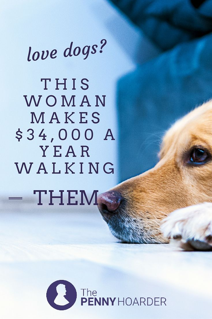 Love walking your dog? Here's how this woman turned her passion into a career and became a professional dog walker. - The Penny Hoarder http://www.thepennyhoarder.com/dog-walker-makes-34k-a-year/