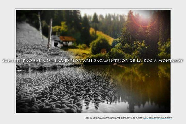 Campanie destinata deschiderii dialogului intre cetateni si deputatul Daniel Florea (PSD) pe tema Rosia Montana