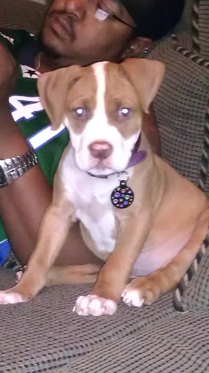 She is gettin sooo Big! I Love my puppy...: Sooo Big, Gettin Sooo