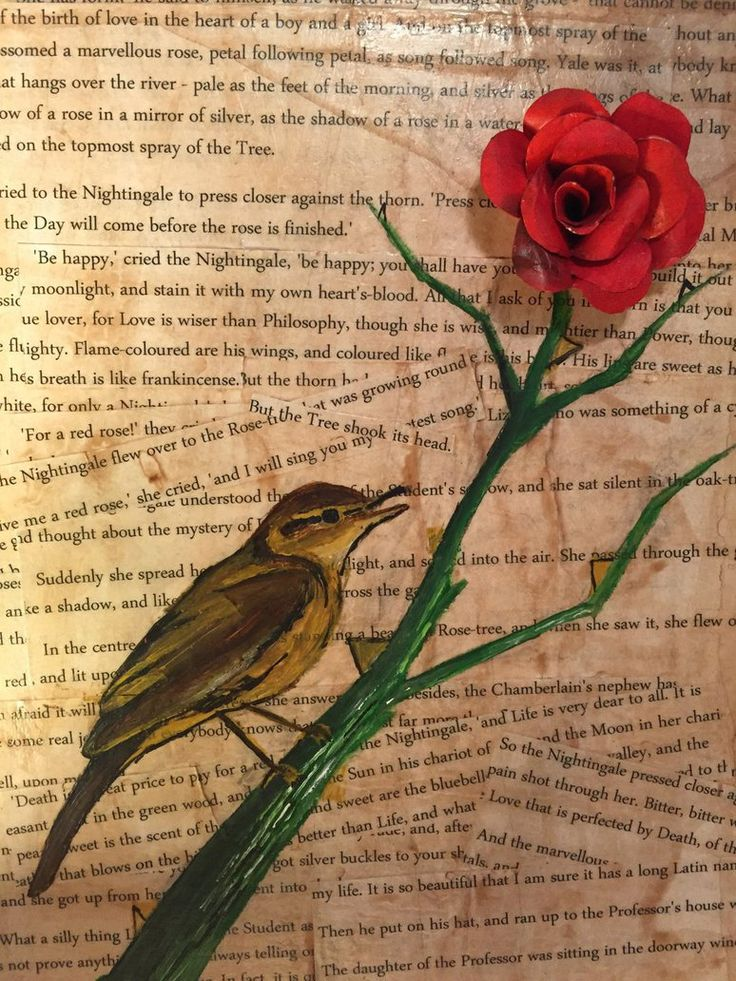 essay on the nightingale and the rose The nightingale went to see this new rose-tree, and after promising the same in exchange for a red rose, the rose-tree told her that his roses were yellow, but he send the nightingale to his.