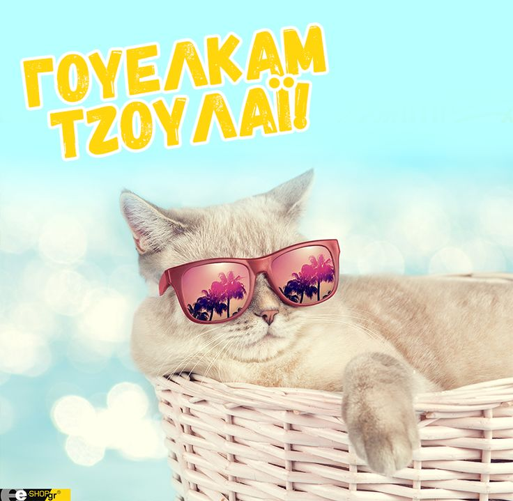 #welcome #july #funny #cat