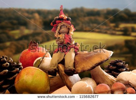forest elf  in autumnal contest