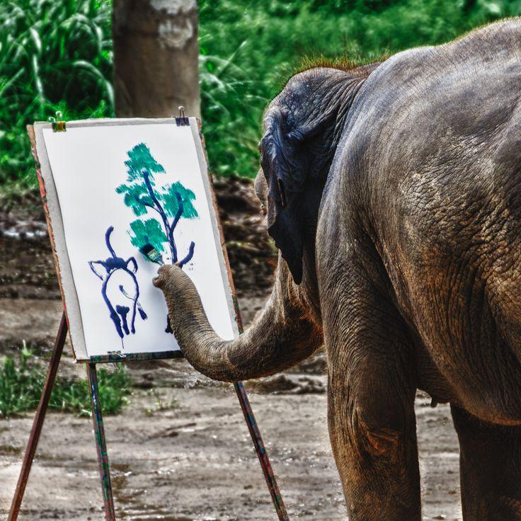 Elephants draw themselves