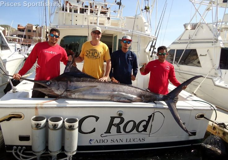 By Pisces Sportfishing OUR FIRST FISHING TRIP AFTER ODILE, yesterday we had our first clients go out after the hurricane aboard Bill Collector: Sean Haberberger, Craig Harris & Tage Gill from ...