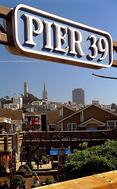 "San Francisco - Fisherman's Wharf ""Pier 39"" by David Paul Ohmer Oh the best chowder in a bread bowl! and the Sea Lions! So cool!"