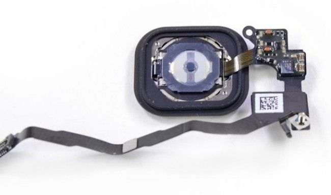 Новые iPad получат сканеры Touch ID