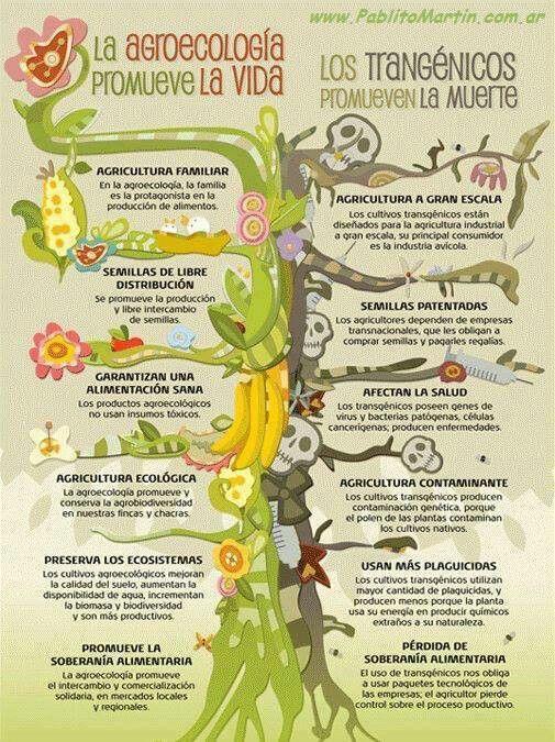 Agro Eco promueve la Vida