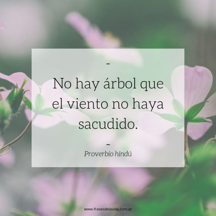 Wise Quotes, Words Quotes, Inspirational Quotes, Great Words, Some Words, Motivational Phrases, Dad Birthday, Spanish Quotes, How I Feel