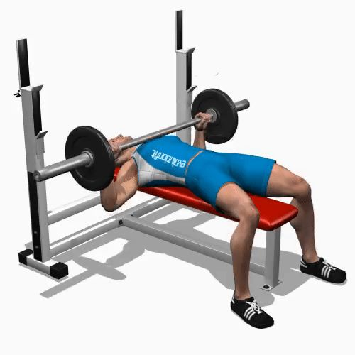 17 Best Ideas About Bench Press On Pinterest Bench Press Weights Bench Press Workout And