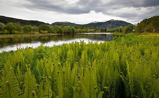 123pix fotoblogg: Fototips 3: Hvor plassere fokus i et landskapsbilde? Dybdeskarphet