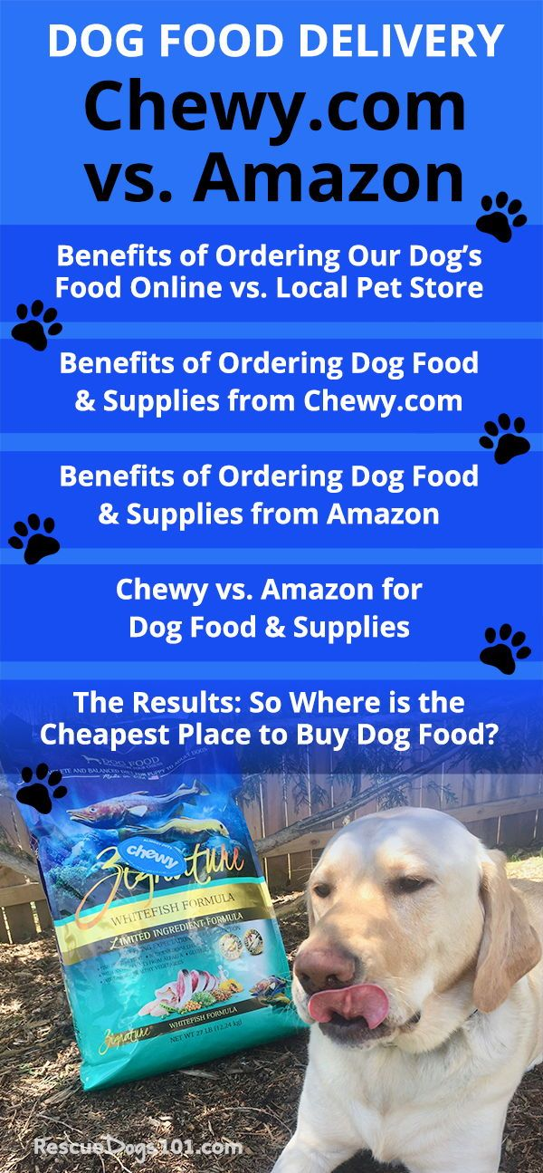 Best Place To Buy Dog Food And Supplies Online Dog Food Online Dog Food Recipes Pet Store