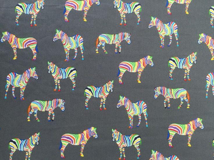 Rainbow Zebras – Grey