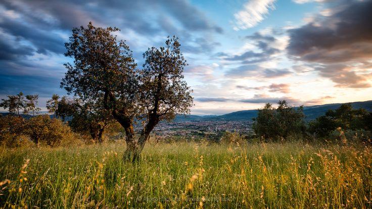 Sunset over Pistoia (Tuscany) - Sunset over Pistoia (Tuscany) - Italy