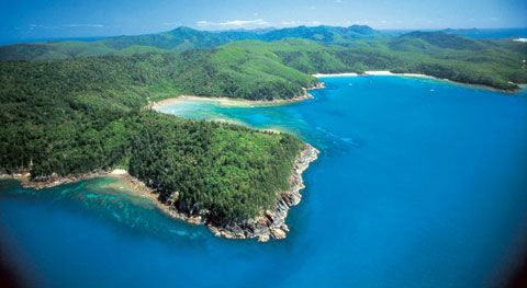 Hook Island, The Whitsundays, QLD. Budget-friendly and full of exquisite wilderness.