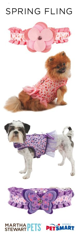 Spring is finally here! Walk your pet in style with these Martha Stewart Pets floral harnesses with coordinating collars and leashes.