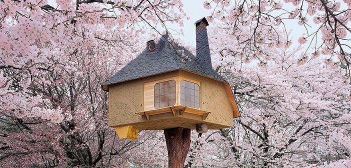 Incredible Three House Around The World