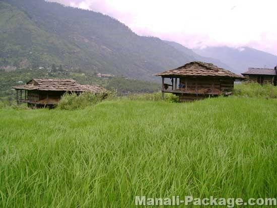 Amritsar  Dalhousie  Dharamshala  Manali Shimla