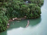 La explotación de los recursos forestales, mineros y pesqueros del Chocó Biogeográfico ha beneficiado poco a sus pobladores.