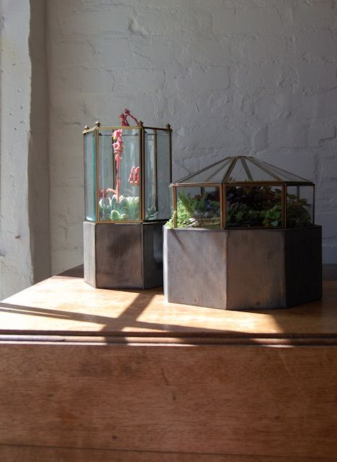 Repurposed Garden Planters: Recycling Ideas for Indoor and Outdoor Gardens…