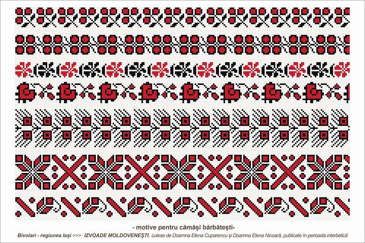 cuparencu+-+11b+-+bivolari+-+iasi.jpg (1600×1067)