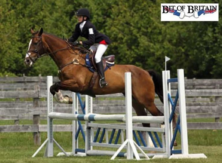 Riding runs in this junior rider's family. Find out how being part of an Eventing barn show team is helping this girl work her way up the levels... http://eventingconnect.today/2016/08/04/rider-connect-from-bit-of-britain-emma-richardson/
