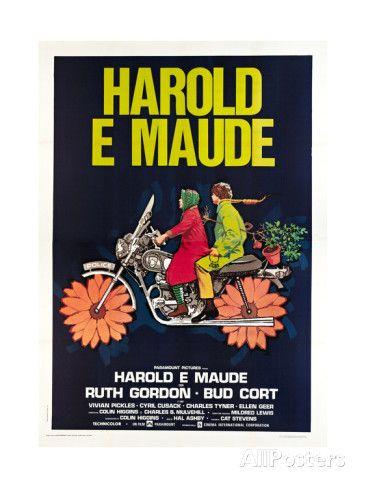 HAROLD AND MAUDE, (aka HAROLD E MAUDE), Italian poster, from left: Ruth Gordon, Bud Cort, 1971 Prints at AllPosters.com