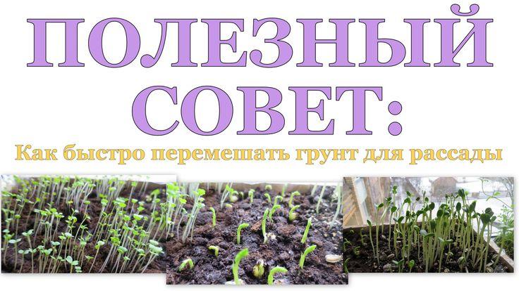☝ ПОЛЕЗНЫЙ СОВЕТ по приготовлению почвы для рассады ☝