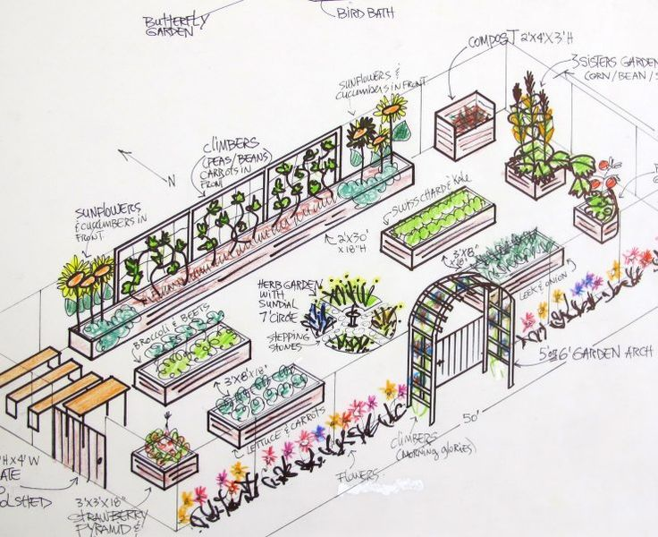 Raised Bed Vegetable Garden Design Plans On School Drawing