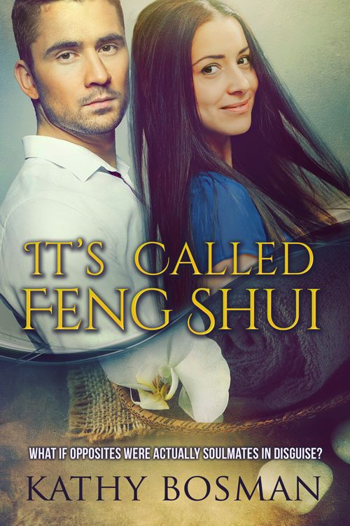 Opposites attract - a burned out rock drummer and intense businessman fall in love, but secrets and past hurt work to pull them apart: http://www.amazon.com/Called-Feng-Shui-Kathy-Bosman-ebook/dp/B017I49JE8