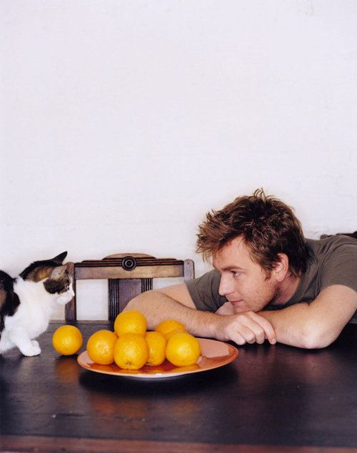 Ewan McGregor & cat. I always wonder *why* pictures like this are taken. I mean, I'm not arguing...not at all. But, why?